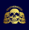 brotherhood gold skull vector image