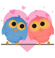 cartoon couple owl girl and boy vector image vector image