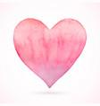 heart pink natural watercolor vector image vector image