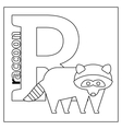 Raccoon letter R coloring page vector image vector image