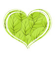 foliage in the form of heart on a white background vector image