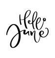 hand drawn typography lettering text hello june vector image vector image