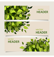 leaf headers set vector image vector image