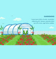 organic fruits cultivation web banner template vector image vector image