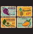 organic fruits farm or market rusty metal plate vector image vector image