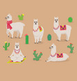 set of cute llamas in different poses desert with vector image