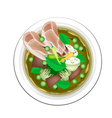 Thai Green Curry with Beef and Eggplant vector image