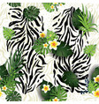 zebra and leaves vector image