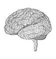 3d outline brain rendering 3d vector image