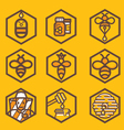 apiculture icons vector image