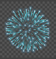 beautiful blue firework bright salute isolated vector image vector image