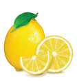 fresh lemon with leaf and slices vector image vector image