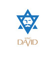 king david vector image