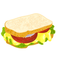 sandwich with cheese vector image vector image
