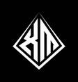 xm logo letters monogram with prisma shape design vector image vector image