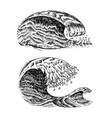 atlantic tidal waves vintage old engraved hand vector image