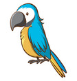 blue parrot on white background vector image vector image