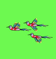 bunch exotic birds on green background vector image