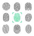 collection of fingerprints on vector image