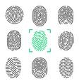 collection of fingerprints vector image