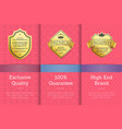 exclusive quality 100 guarantee high brand label vector image vector image