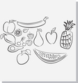 Fruits sketch vector image