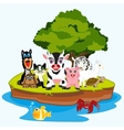 Much animals on island vector image vector image