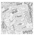 Popular Pool Accessories for Teens Word Cloud vector image vector image