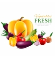 Vegetables group poster vector image vector image