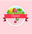 thin line radish design vegetable food banner vector image