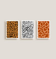 animal print texture background set vector image vector image