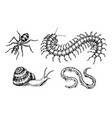 big set insects bugs beetles snail worm vector image vector image