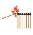burning matches color vector image