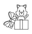 cat in giftbox vector image