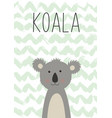 cute koala poster card for kids vector image