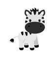 cartoon character of little funny zebra vector image vector image