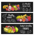 exotic tropical fruits food farm market banners vector image vector image