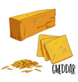 full color cheese hand drawn vector image vector image