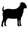 goat black icon vector image vector image