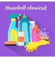 Household Chemical Flat Design vector image vector image