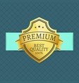 premium best quality award 100 guarantee vector image vector image