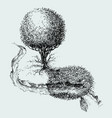 simple landscape meadow aerial view tree vector image vector image
