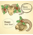 Sketch cute goat head with mistletoe vector image vector image