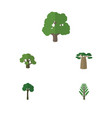 flat icon bio set of evergreen jungle decoration vector image
