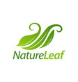 green nature leaf logo icon concept design vector image vector image