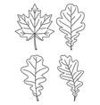 line art black and white 4 oak leaf set vector image