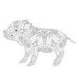 piggy coloring book for adults vector image