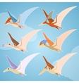 set pterosaurs vector image
