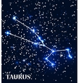 Symbol Taurus Zodiac Sign vector image vector image