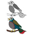 bird coloring doodle singing birds isolated vector image